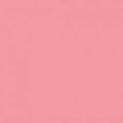 Фон пластиковый FST 100x200 розовый матовый