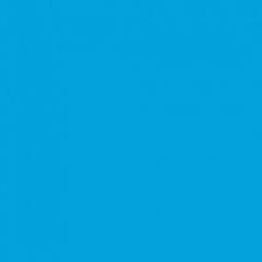 Фон пластиковый FST 100x200 синий матовый