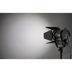 Постоянный свет FST FL-1000WS Светодиодный осветитель