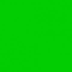 Бархатный фото фон (210см х 300см) зеленый хромакей
