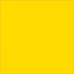 Бархатный фото фон (210см х 300см) желтый