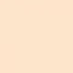 Фон бумажный FST 2,72х11 NEW WHEAT 1015 кремовый
