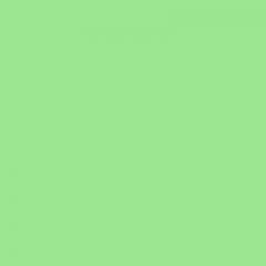 Фон бумажный FST 2,72х11 SPRING GREEN 1026 весенняя зелень