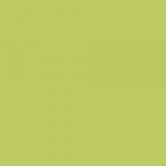 Фон бумажный FST 2,72х11 TROPICAL GREEN 1019